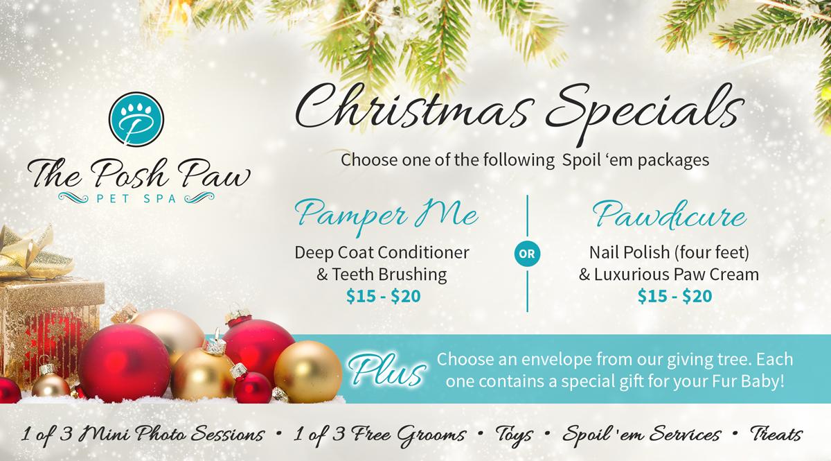 2015-PP-christmas-promo-blog
